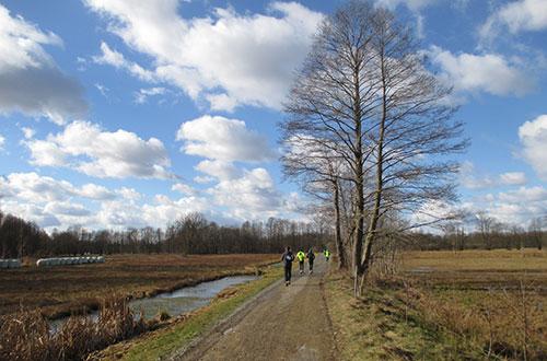 Herrlicher Wolkenhimmel über der Landschaft und den Läufern