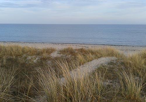 Läuferblick über das Meer bei Marielyst