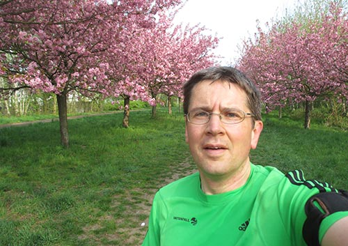 Selfie mit blühenden Kirschbäumen