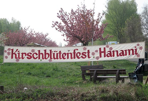 Banner zum Hanami Kirschblütenfest am Berliner Mauerweg