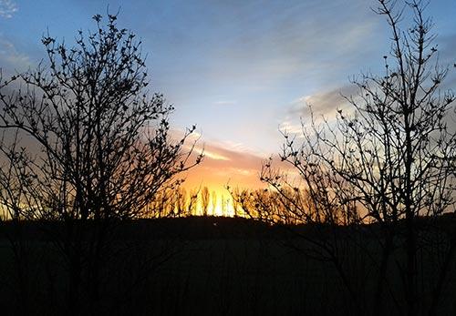 Sonnenaufgang für frühe Läufer