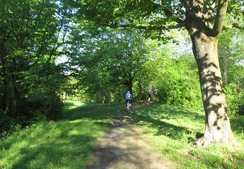 Läufer mit Fahrradbegleitung im Park