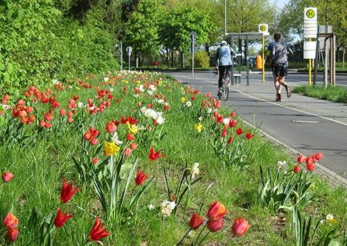 Läufer mit Frühlingsblumen