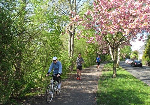 Läufer mit Radbegleitung unter blühenden Obstbäumen