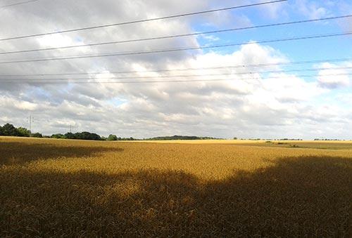 Sonne und Wolken über den Feldern