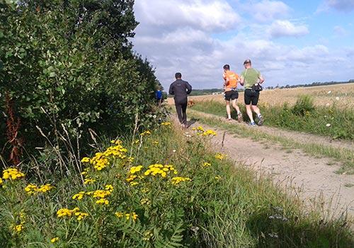 Läufer an der Bahnstrecke kurz vor Diedersdorf