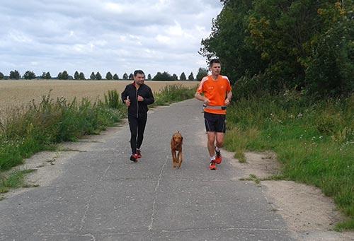 Läufer mit Hund