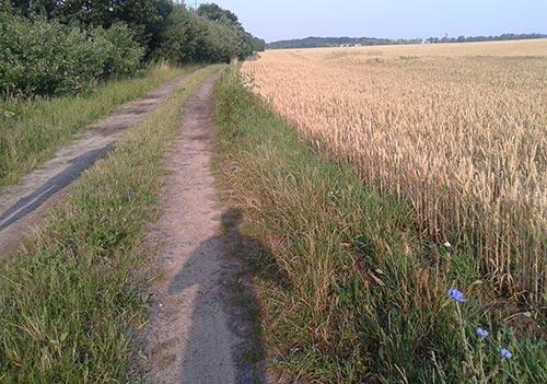 Feldweg an der Bahnlinie