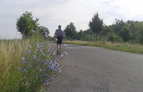 Läufer auf alter B101