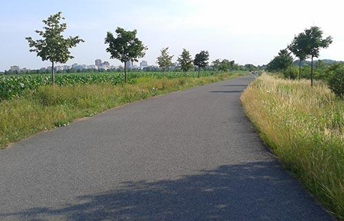 Radweg alte B101 Richtung Marienfelde