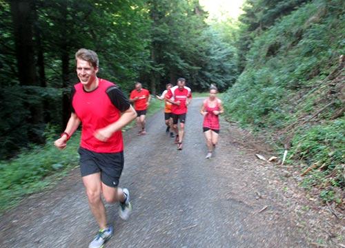 Läufer im Harz