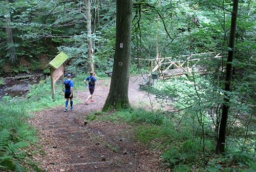 Läufer an Brücke im Harz