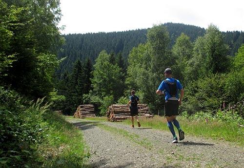 Laufen mit herrlichem Blick auf die Harz-Landschaft
