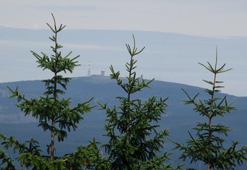 Läufer-Blick auf den Brocken im Harz