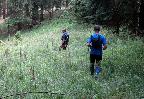 Läufer auf einem kaum erkennbaren Pfad