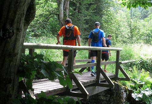 Kleine Brücke am Neuen See
