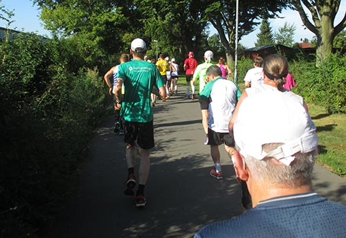 läuferfeld des Tegel-Halbmarathon 2015
