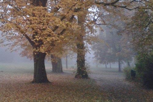 Herbstlicher Gutspark Marienfelde