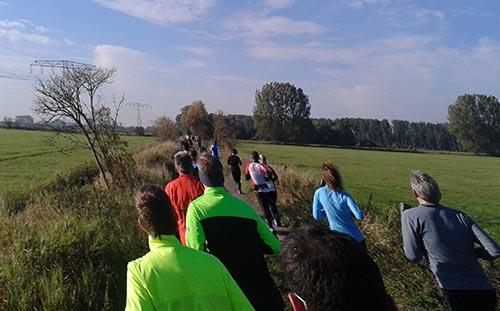 Läufer beim Diedersdorfer Schloss-Wiesen-Lauf