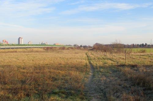 Single Trail entlang der B101