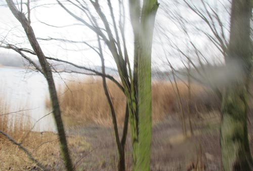 Blick auf Kaulsdorfer See