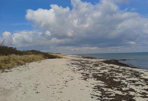 Strand nahe des südlichsten Punktes von Dänemark