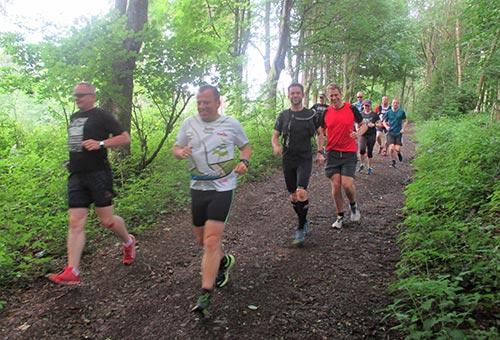 Laufblogger auf der 20-km-Runde durch den Harz