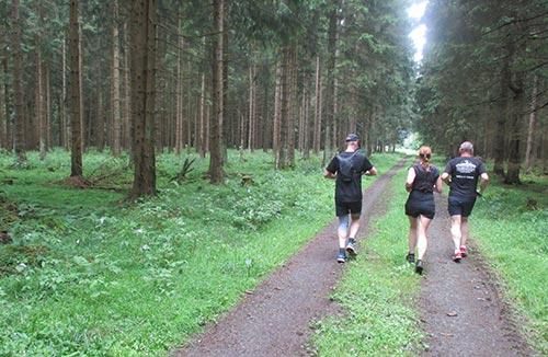 Und weiter durch den Wald