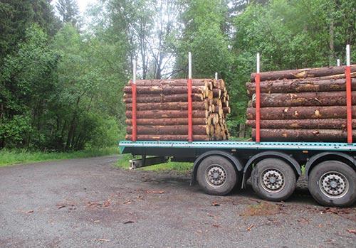 Ein Holztransporter – hier muss ich wieder in den Wald hinein laufen
