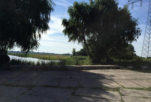 Gewässer in der Diedersdorfer Heide am Nuthegraben