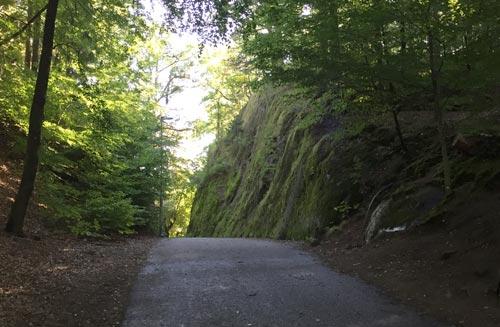Weg im Nolhaga Park
