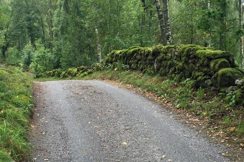 Moosbedeckte Natursteinmauer