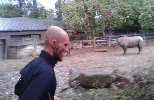 Läufer des Great 10k mit Nashorn