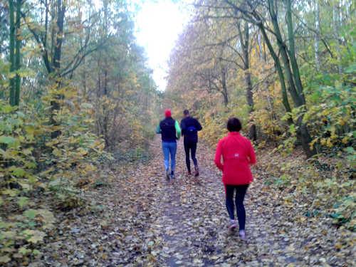 Herbstlauf auf dem südlichen Berliner Mauerweg