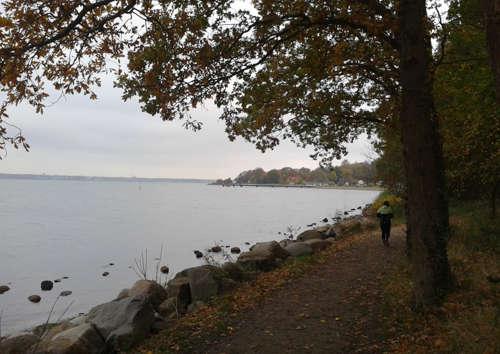 Laufen an der Kieler Förde bei Mönkeberg