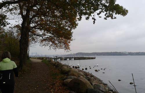 Läufer-Blick auf das Wasser bei Mönkeberg