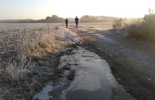Zugefrorene Pfützen auf Feldweg