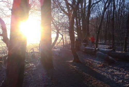 Laufen durch einen kleinen Wald