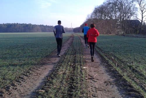 Der spontane neue Weg über das Feld