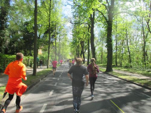 Läufer unter Bäumen
