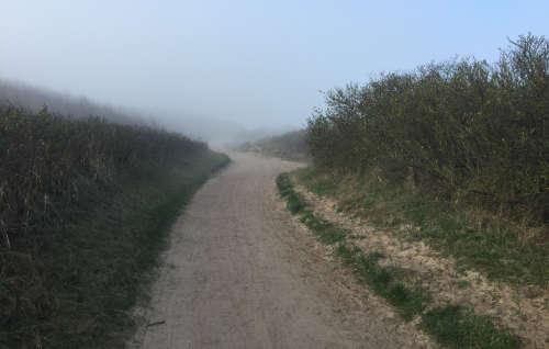 Weg entlang der Steilküste bei Wustrow