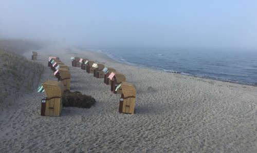 Strandkörbe am Strand von Wustrow