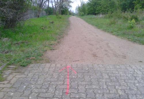 Lauf-Schnitzeljagd im Freizeitpark Marienfelde