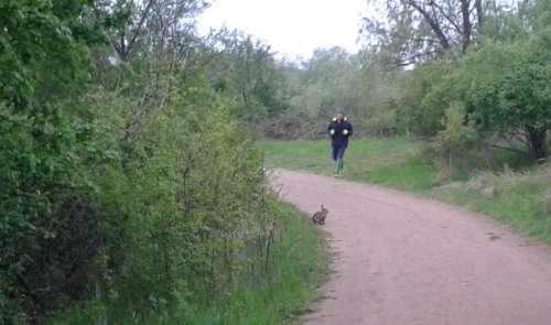 Karnickel und Läufer – Lauf-Schnitzeljagd im Freizeitpark Marienfelde