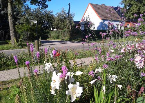 Blumen in Mahlow