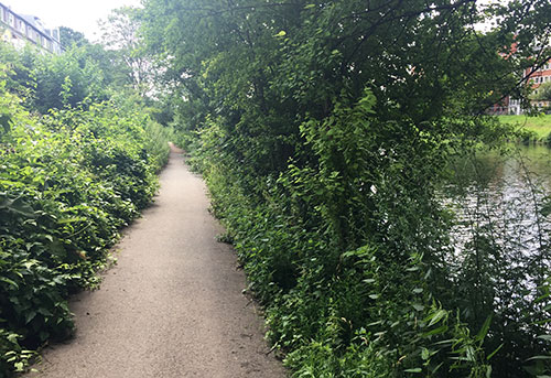 Weg entlang der Kleinen Weser
