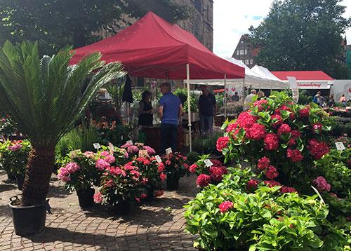 Blumenmarkt Unser-Lieben-Frauen-Kirchhof