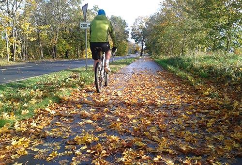 Herbstlauf mit Radbegleitung