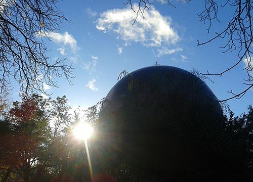 Gegenlicht im Marienpark