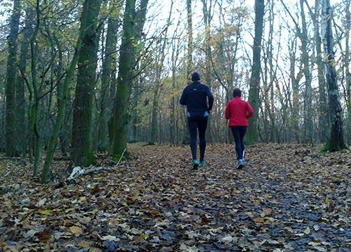Läufer im herbstlichen Wald